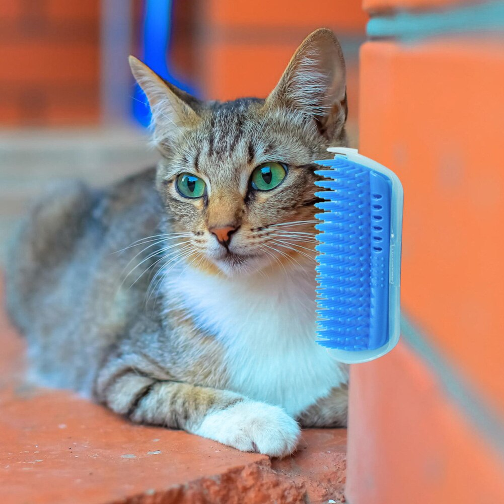 Pet Hair Removal Massage Comb Detachable Cat Corner  Scraping Friction Brush Pet Grooming Cleaning Supplies