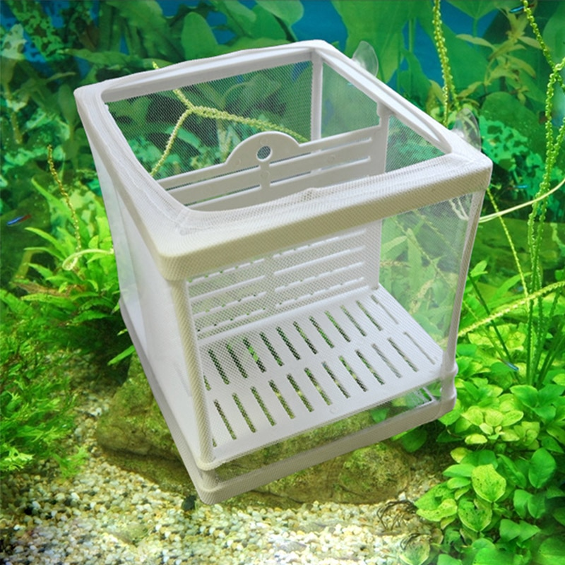 Fish Tank Aquarium Breeding Box Hatchery Float Breeder Box Isolation Breeding Breeder Box Baby Fish Aquarium Accessory  Supplies