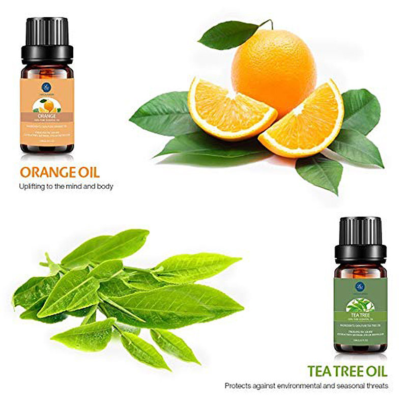 Lagunamoon Pure Essential Oils 10ML 6pcs Gift Set Humidifier Aromatherapy Eucalyptus Papermint Lemongrass Orange Tea Tree Oil