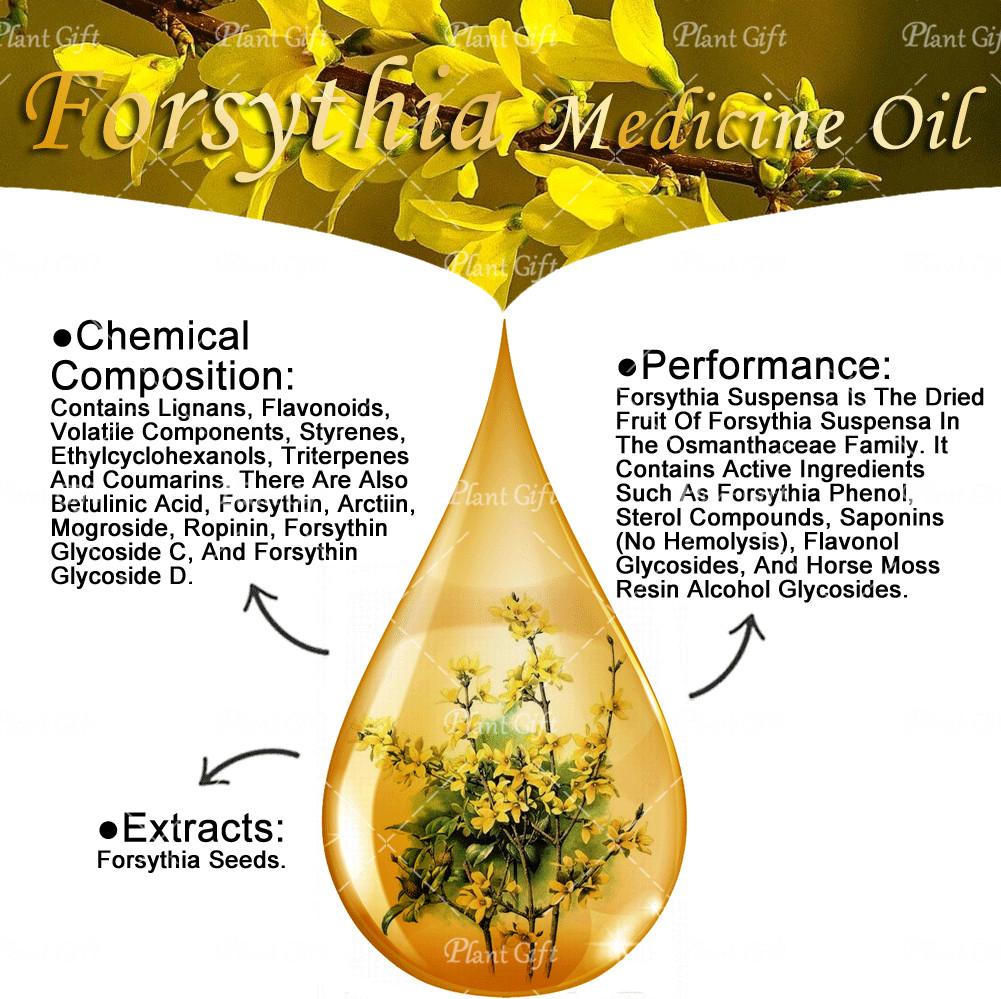 100% pure plant Herbal medicine oils  Forsythia Oil herbal oil 10ml Essential oils-Heat, Detoxification, Swelling