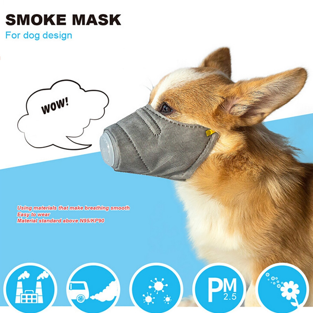 masque In Stock 3pc Filters Adjustable Reusable cover Pet Dog Care Dropshipping New Care 2020 fast shipping mascarilla