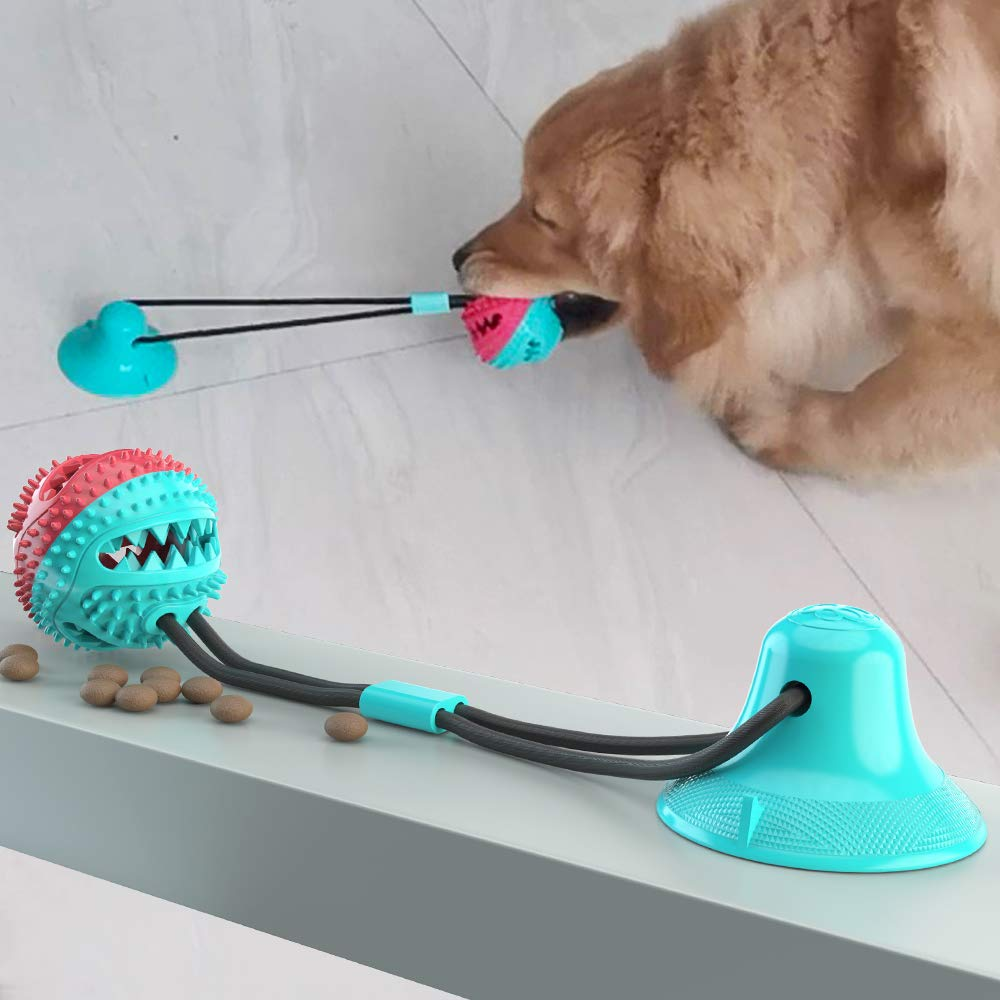 Dog Chew Toy Molar Bite Toys Self-Playing Rubber Ball with Suction Cup Multipurpose Interactive Ropes Toy Pet Teeth Care Tools