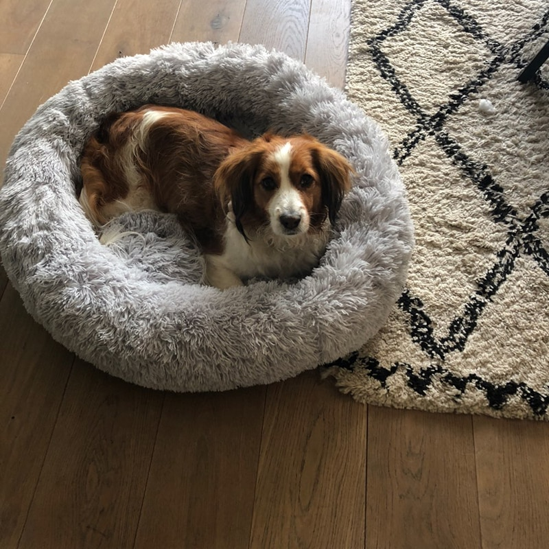 Warm Round Dog Bed 7 Sizes Round Pet Lounger Cushion For Small Medium Large Dogs & Cat Winter Dog Kennel Puppy Mat Pet Bed