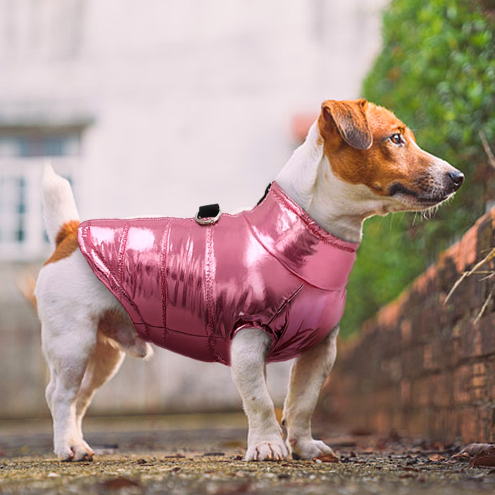 Clothes For Small Dogs Waterproof Dog Clothes Puppy Pet Jacket Winter Warm Vest Dog Coat Clothing For Chihuahua French Bulldog