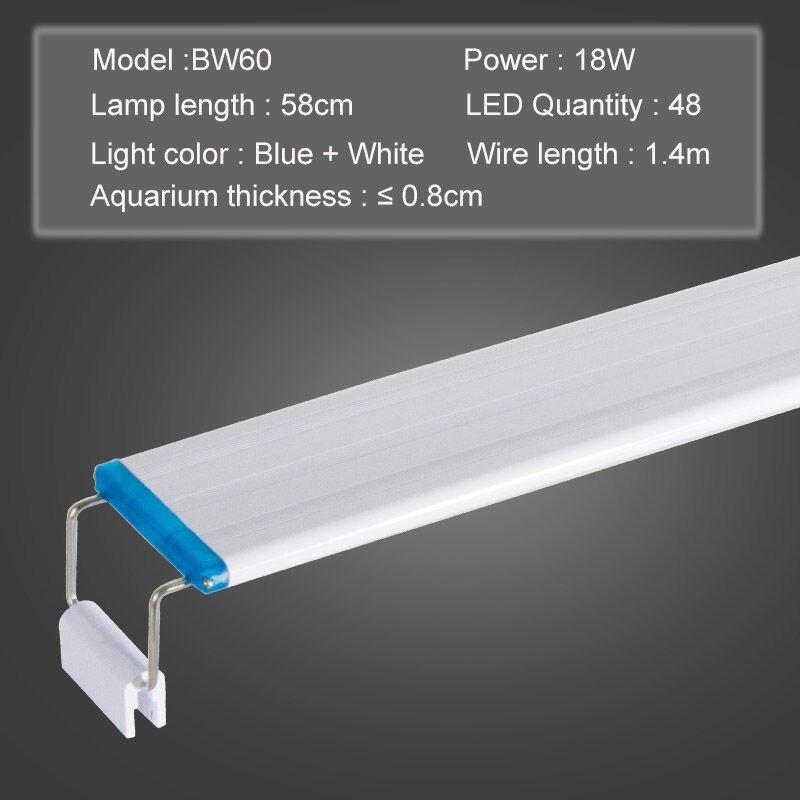 Blue white 60
