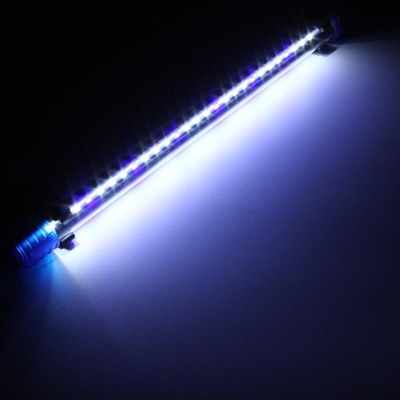 White Blue 20CM