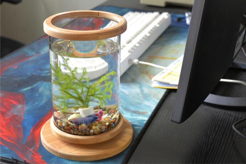 1pcs Glass Betta Fish Tank Bamboo Base Mini Fish Tank Decoration Accessories Rotate Decoration Fish Bowl Aquarium Accessories