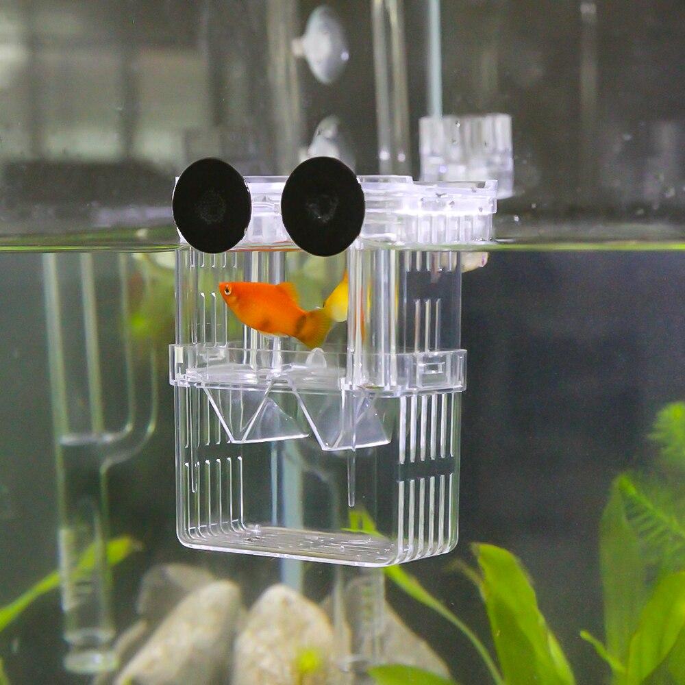 Fighting Fish Tank Breeding Floating Isolation Hatchery Fish Tank Aquarium Breed Box with 3pcs Pasteur Pipette for Aquarium Tank