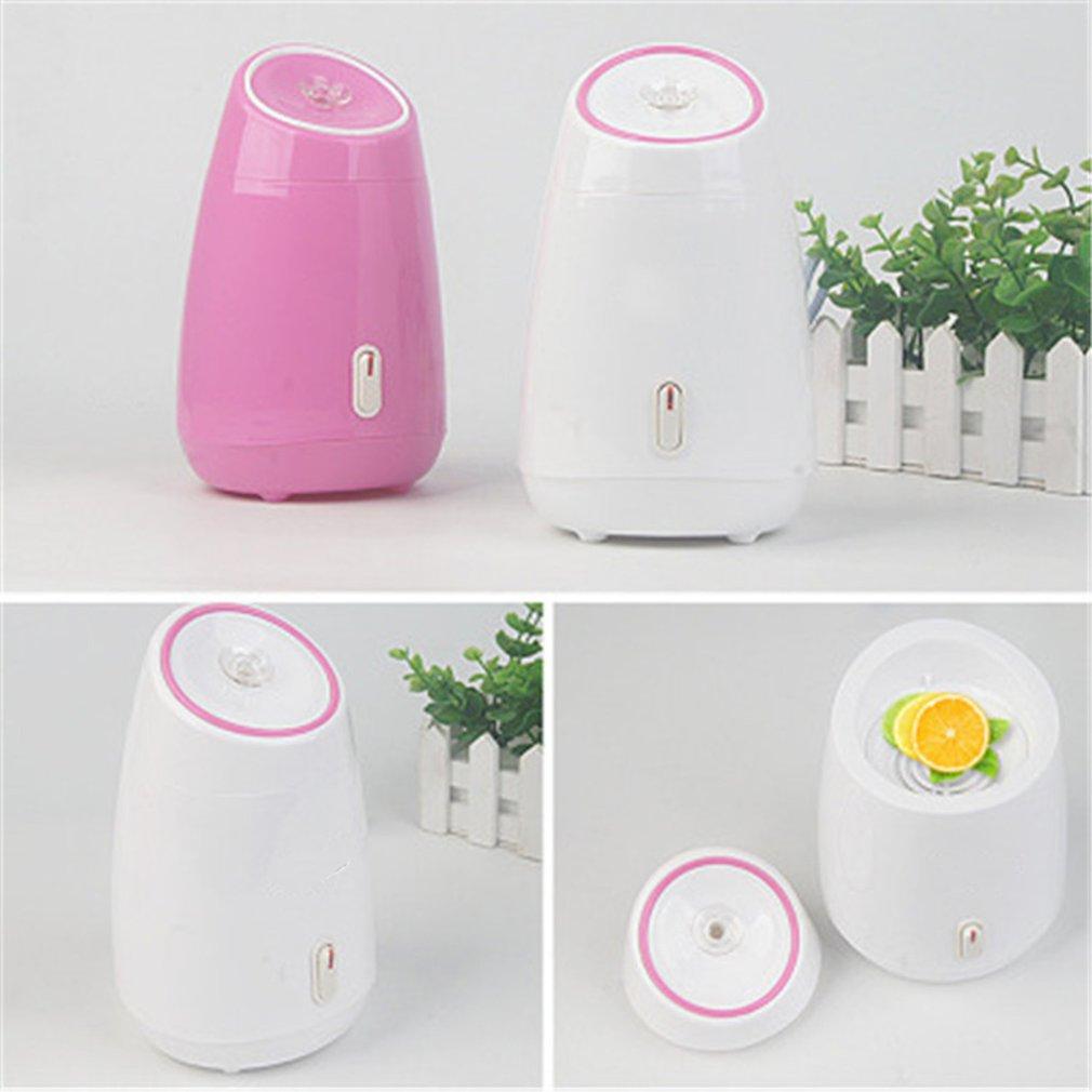 Fruit Facial Steamer Hot Mist Steam Sprayer SPA Moisturizing Face Thermal Sprayer Humidifier Deep Cleansing Beauty