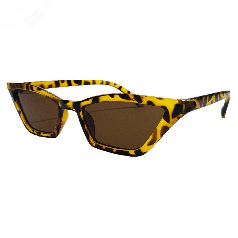 Women Small Frame Vintage Cat Eye Sunglasses