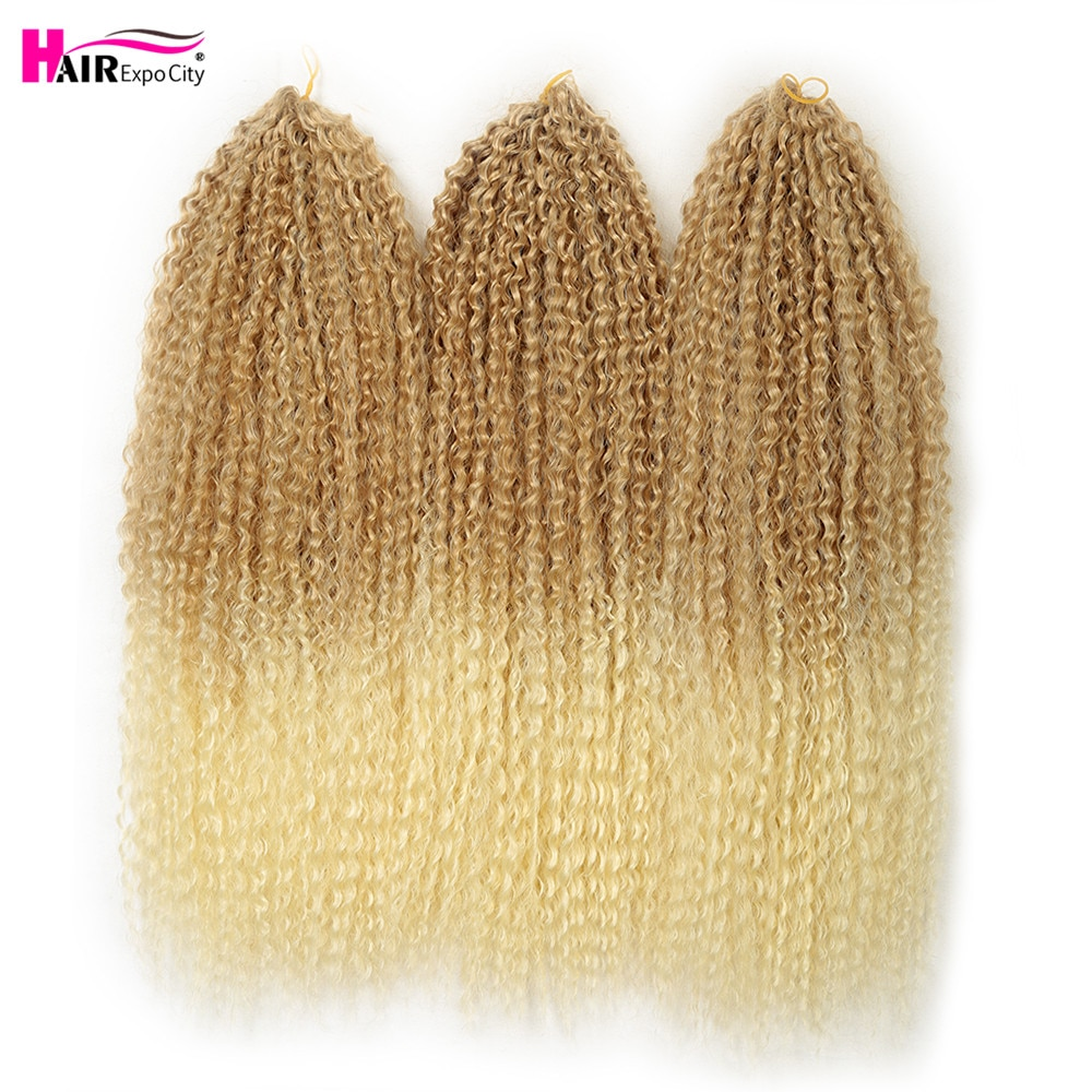 20-28 Inch Afro Kinky Curly Crochet Braids Hair Ombre Braiding Hair Extensions Marly Hair For Women Brown 613 Hair Expo City
